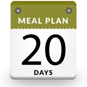 20 days vegan meal plan dubai
