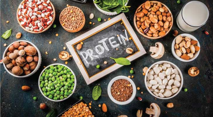plant-based-protein